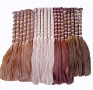 Virgin Raw Colored Human Hair Bulk (030)
