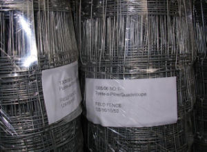 Ss304 Stainless Welded Wire Mesh Roll