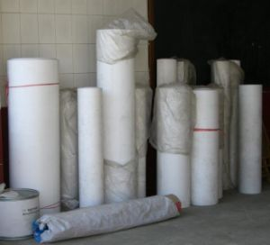 PTFE Sheet, PTFE Rolls pictures & photos