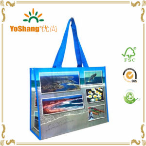 Promotional Full Color Printed PP Non Woven Matt Laminated Bag pictures & photos