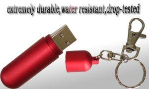USB Flash Disk (HFD049)