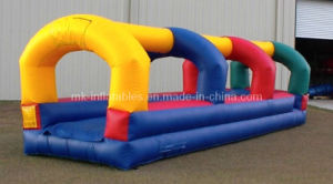 Inflatable Water Slide (WS0016)