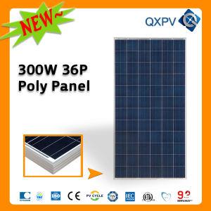 36V 300W Poly Solar Module pictures & photos
