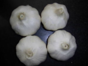 Fresh Garlic (No-2)