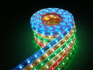 LED Strip Light 5050-60-IP68, Can Be Used Under Water (GL-F5072N-06A)