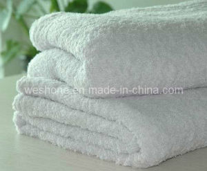 Polyester Blanket, 100% Polyester Blanket Pb-K08 pictures & photos