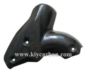 Carbon Parts for Ducati Streetfighter pictures & photos