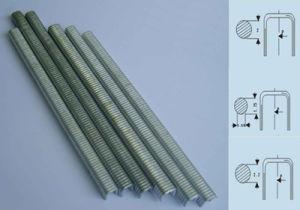 Aluminum Staple pictures & photos