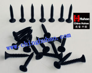 Screw/High Harden Black Phosphated China Gypsum Drywall Screw pictures & photos