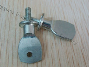Special Steel Screw for Street Road Lighting Fitting (HK250)