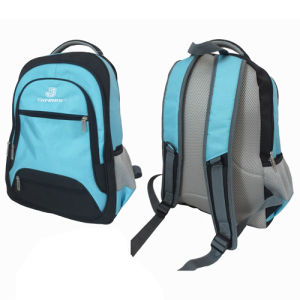 Outdoor Daily Business School Student Leisure Sports Travel Backpack Bag pictures & photos