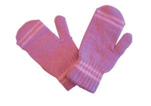 Warm Glove (120)