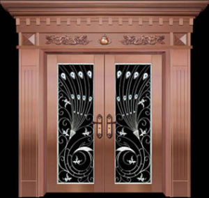 Stainless Steel Door (KD-SS051)