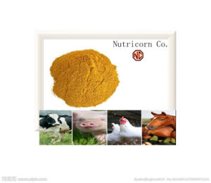 60%Corn Gluten Meal From North China pictures & photos