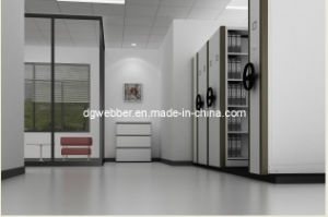 Metal Mobile Filing Cabinets (WEBBER) pictures & photos