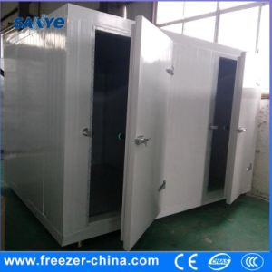 Blast Freezer Cold Room for Meat and Fish pictures & photos