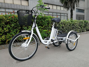 Excellent Price for 3 Wheel Electric Trike pictures & photos