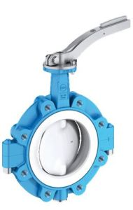 Anti Corrosive PTFE Lined Butterfly Valve (PTFE / PFA / FEP / PO) pictures & photos