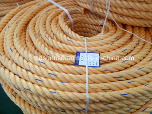 Premium Quality Polypropylene Rope Yellow with Blue pictures & photos