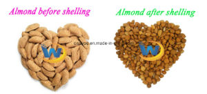 Almond Hazelnut Peeling Shelling Cracker Breaking Crushing Cracking Machine pictures & photos