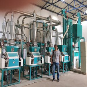 Tanzania Running 20t Maize Flour Milling Machine Complete Line pictures & photos