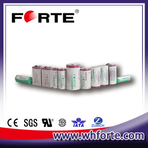 Primary Lithium Battery 3.6V C Size Er26500 pictures & photos