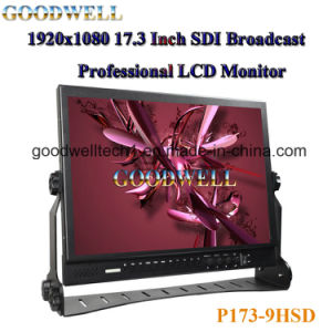 Sdi Input 17.3 Inch LCD Monitor pictures & photos