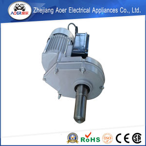 AC Single Phase Low Rpm 4 Poles Gear Electric Motor pictures & photos