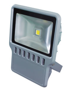 100W LED Light Flood Light LED pictures & photos