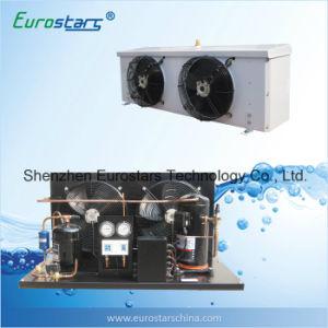 Hermetic Type Compressor Freezer Condensing Unit pictures & photos