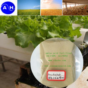 Animal Source Amino Acids with Chloridion Organic Fertilizer Amino Acids pictures & photos