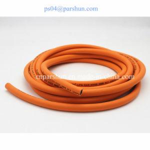 Household Fuel Rubber LPG Gas Hose/ Propane Hose pictures & photos