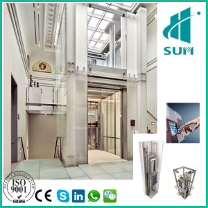 luxury home lift with competitive price villa house elevator sumelevator