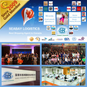 Professional Shipping Logistics Service From China to Canada pictures & photos