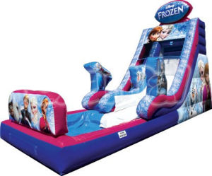 Frozen Bouncer Inflatable Water Slide with Pool (CS101) pictures & photos