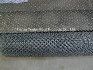 Galvanized Iron Wire Hexagonal Wire Mesh/Hot Dipped Galvanized Welded Wire Mesh/Galvanized Square Wire Mesh pictures & photos