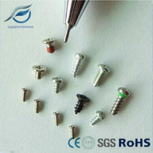 Customize Stainless Steel Micro Screws, Special Screws