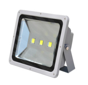 High Quality Factory Price 100W Solar LED Flood Light with PIR Motion Sensor with Ce RoHS pictures & photos