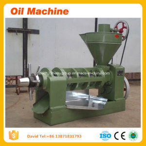 Hot Sale Virgin Coconut Oil Extracting Machines, Coconut Oil Machine pictures & photos