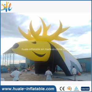 Giant Inflatable Tunnel/ Sport Football, Baseball Entrance Tunnel