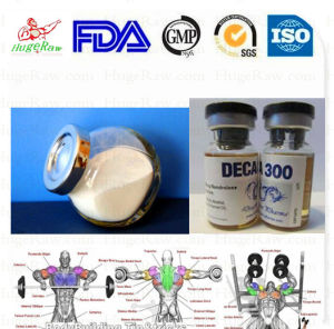 Male Enhancement Chemical Steroid Powder ND Nandrolone Decanoate Deca pictures & photos