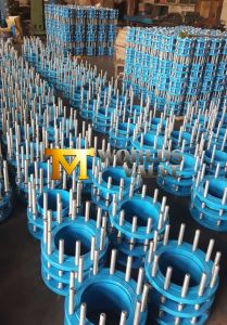 A105 Wcb Pipe Expansion Joints (TSX-10/16) pictures & photos