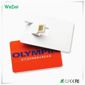 Promotional Card USB Flash Disk with Customized Logo (WY-C01) pictures & photos