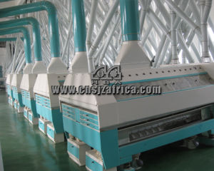 80tpd Auto Wheat Flour Mill pictures & photos