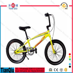 2016 20 Inch Kids Fat Tire Beach Bike Snow Mountain Bike for Kids Bicycle Made in China pictures & photos