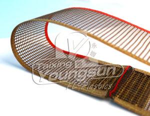 Teflon Coated Fiberglass Open Mesh Fabric Conveyor Belt pictures & photos