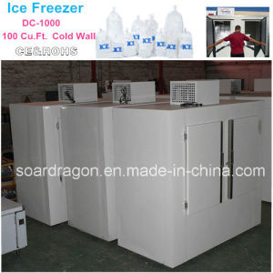 100cu. FT Ice Cube Freezer DC-1000 for Outdoor Use pictures & photos
