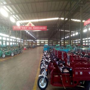 Electric Cargo Trike 50km Range Distance for Farm Transfer Goods pictures & photos