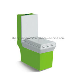 One-Piece Ceramic Toilet Siphonic Flushing Water Saving (A-002) pictures & photos