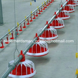 Full Set Automatic Poultry Farm Equipment for Broiler Production pictures & photos